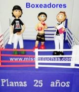 fofucha boxeadores